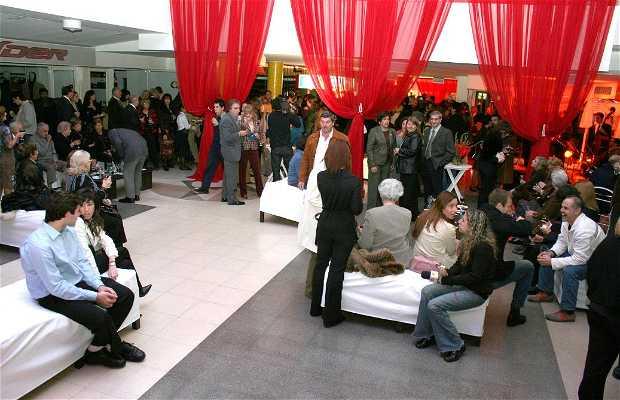 Rosario Gallery
