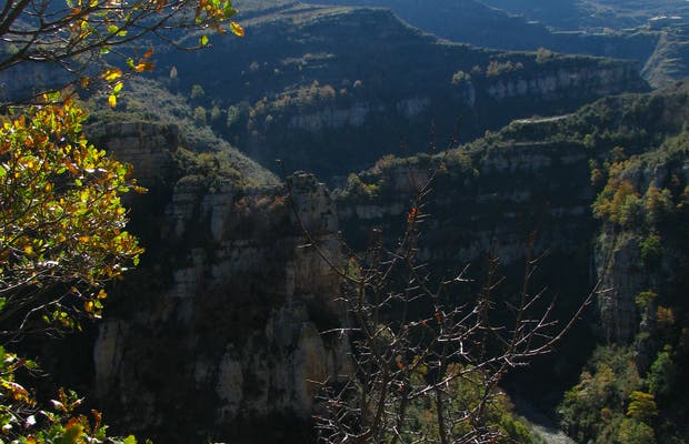 Viewpoint of the Canyon of the Leza river