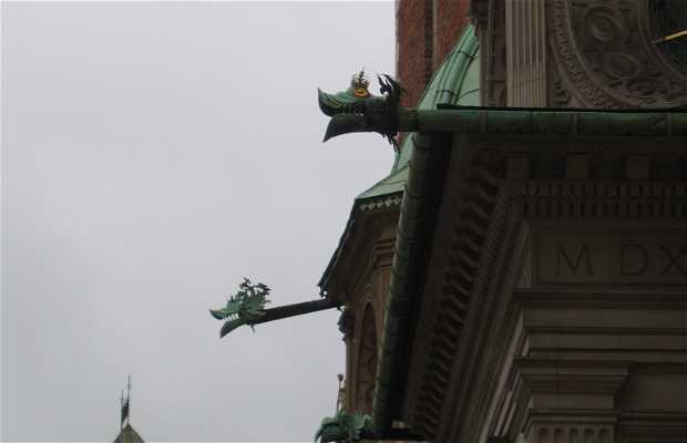 Dragón y dragones