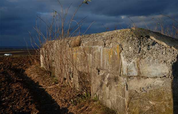 Ruinas Fuerte de Estrasburgo