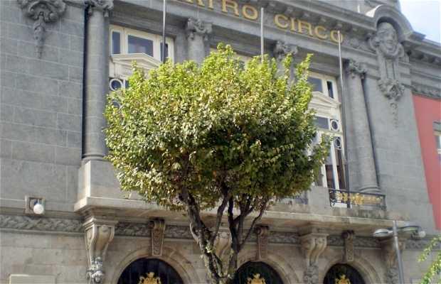 Le Théâtre Circo