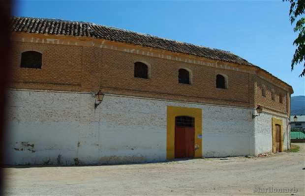 Bull Square of Cabra