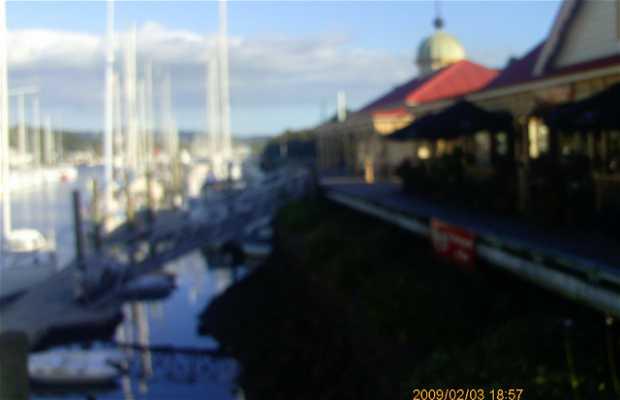 Whangarei Marina