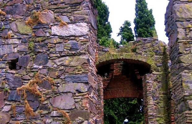 Rovine del convento di San Francesco a Colonia