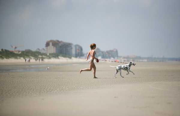 La plage de malo Bray-Dunes