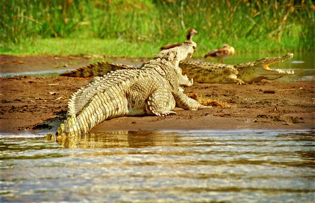Parque Nacional de Abiata-Shala