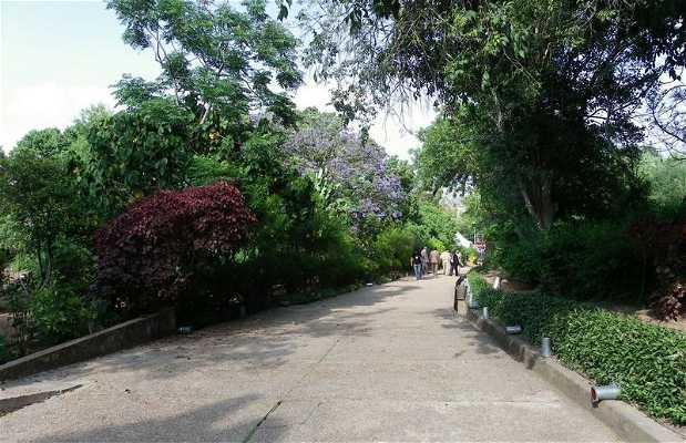 Jardins de Challah