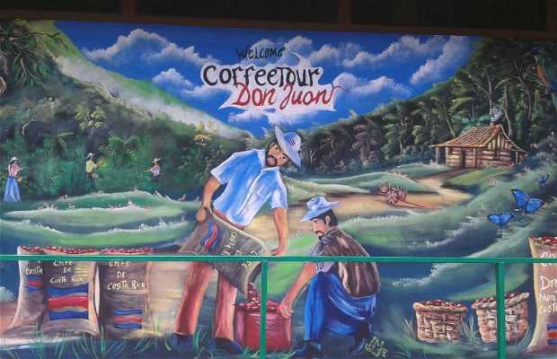 Don Juan coffee and chocolate Tour