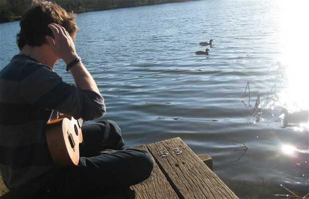 Lago de la UEA (University of East Anglia)