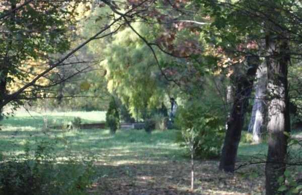 Jardin botanique de Bucarest