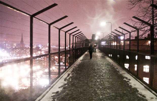 Puente de Katarinavägen