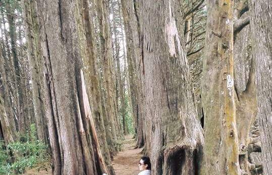 Bosque de la Hoja