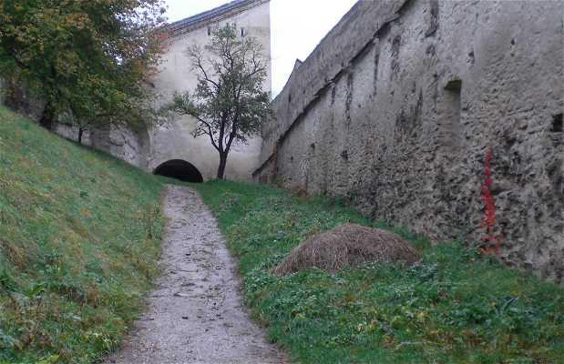 Biertan Fort