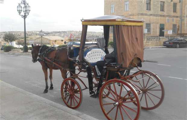 Horse cab