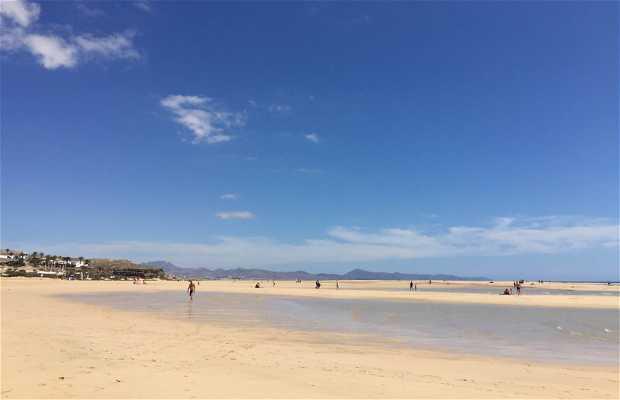Playas de Jandía