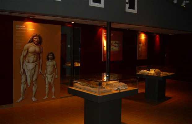 Capellades - Abric Romani Parc Prehistòric