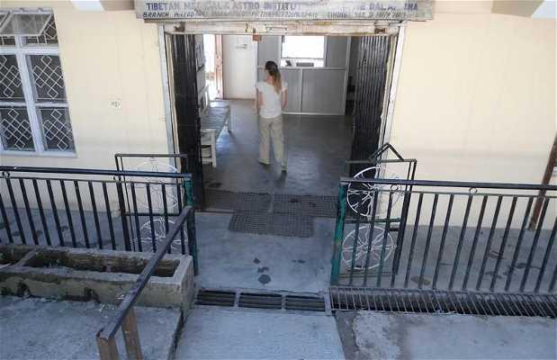 Tibetan Medical & Astro institute of the Dalaï-Lama