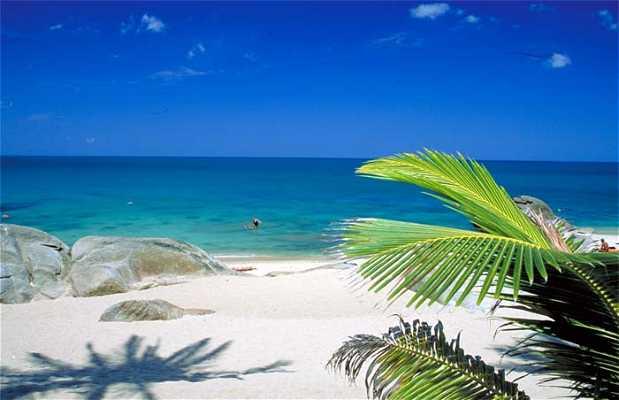 Praia Lamai Beach