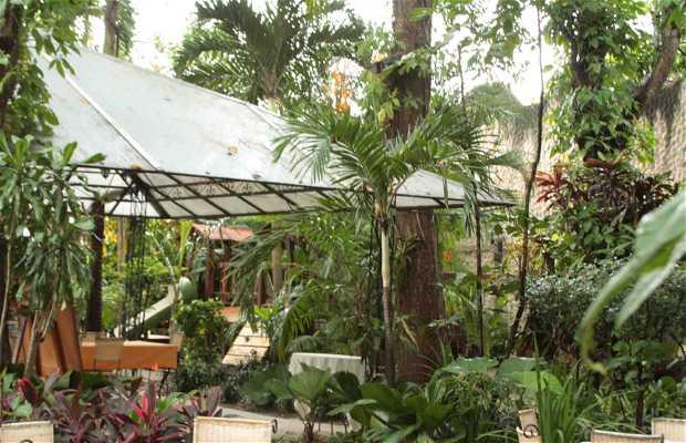 Vivero caf jard n en naguanagua 1 opiniones y 3 fotos for Vivero tu jardin