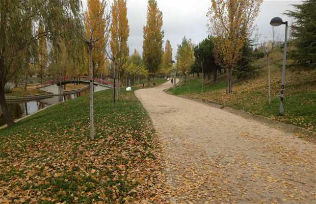 Parque central en tres cantos 6 opiniones y 6 fotos - Aticos en tres cantos ...