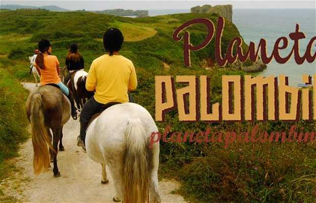 Multiaventura Planeta Palombina