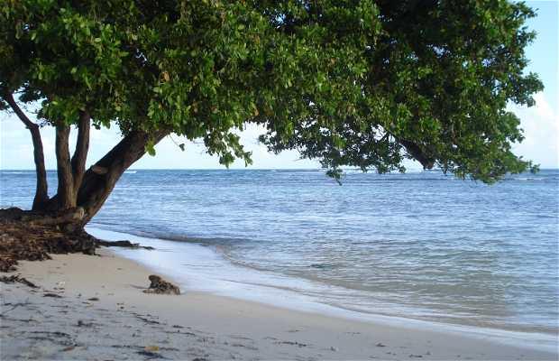 Boijoisolan Beach