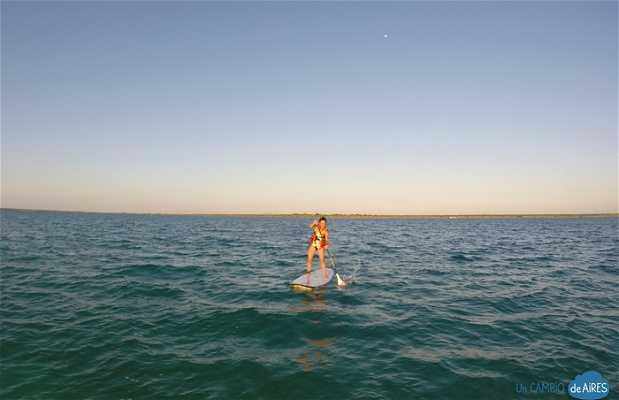 Paddle Surf en Bacalar