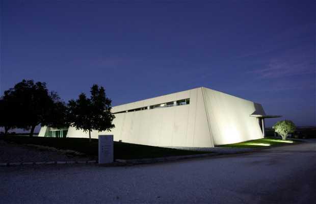 Arquitectura y dise o de bodegas en la ruta del vino for Arquitectura y diseno de hoteles