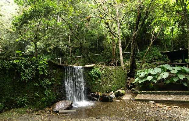 Parque Chorro El Indio