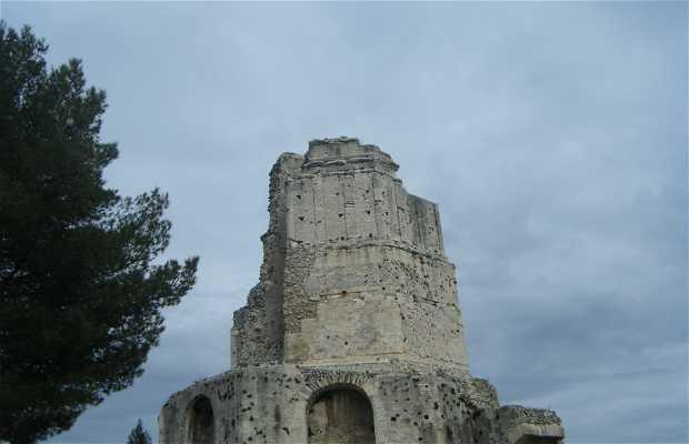 Torre Magna