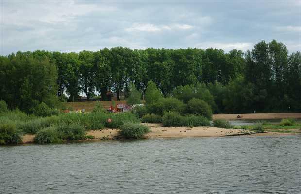Orillas del Loira
