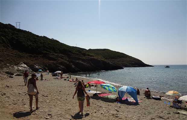 Playa de Alisu