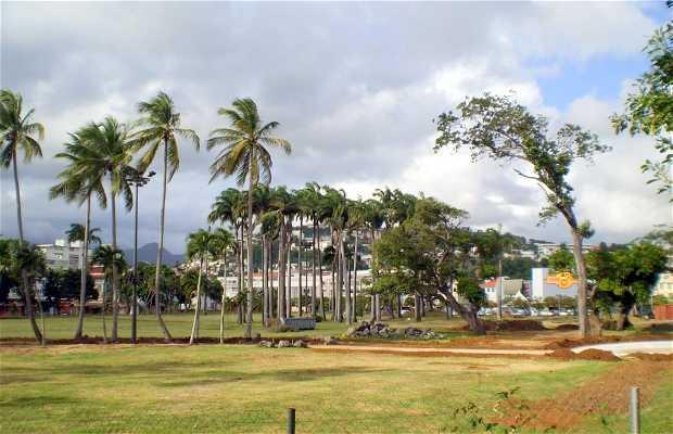 Parque La Savane
