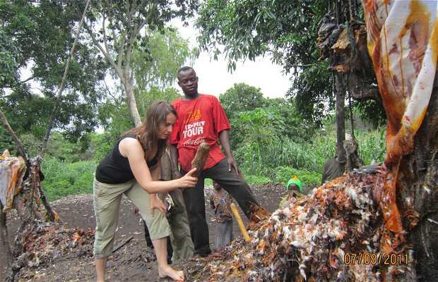 Benin - Fetiche Dankoli
