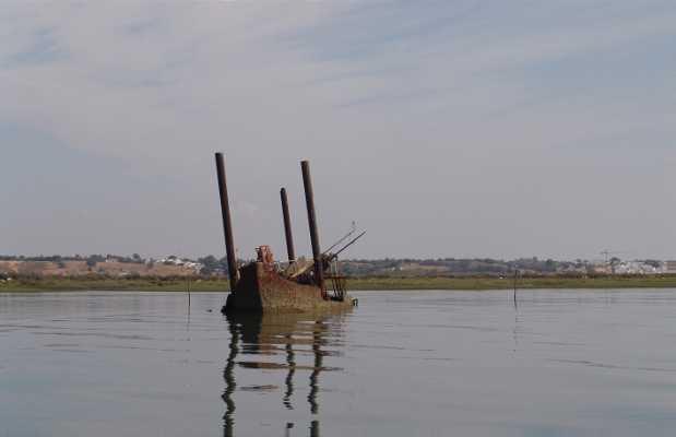 Estero de Isla Canela