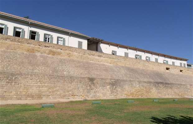 Walls of Nicosia