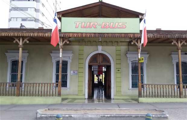 Terminal Tur Bus Iquique