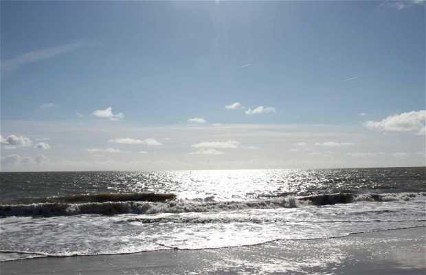 La Faute sur Mer