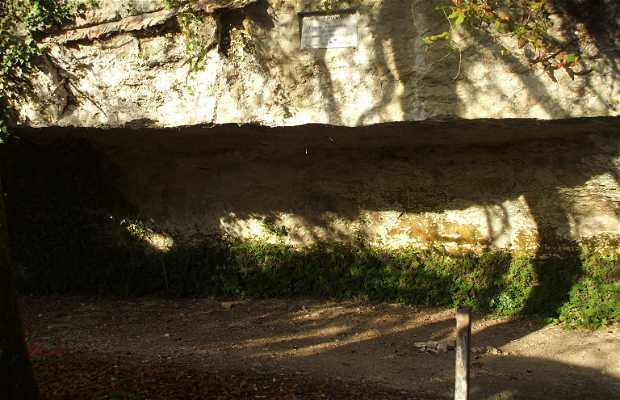 Le site préhistorique de cro-magnon