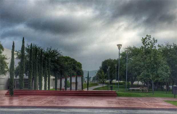 Plaza Fátima