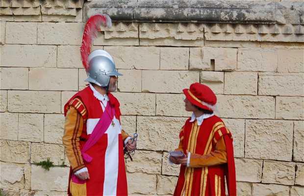Chevaliers de Malte