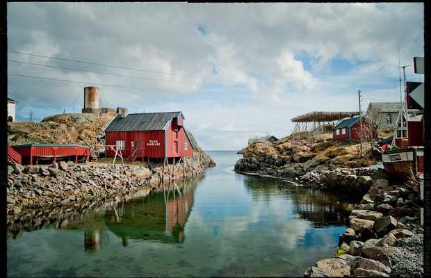 Rorbuer, cabañas de pescadores en Lofoten