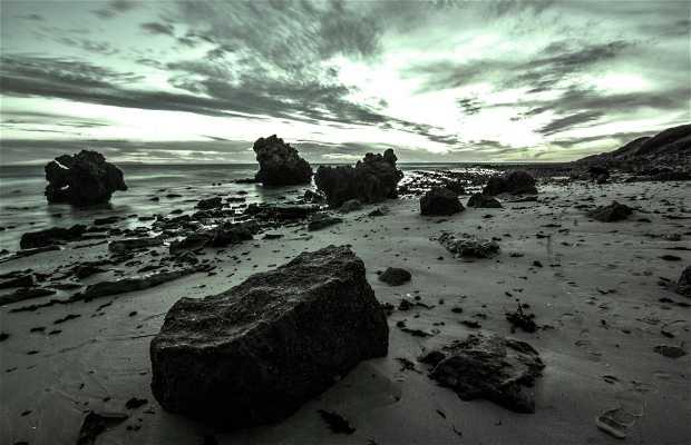 Spiaggia di Bolonia
