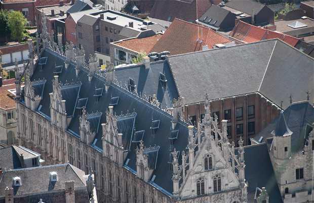 Vistas desde la torre de la Catedral