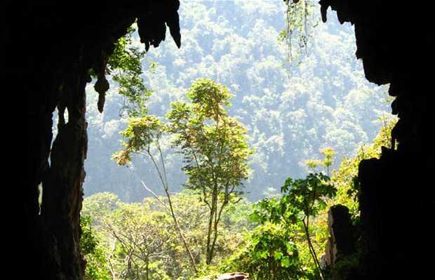 Grottes des Lechuzas