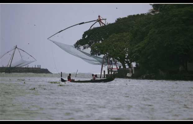 Paseo en barco por la Bahía de Cochin