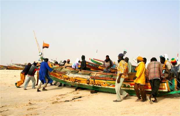 Marché aux Poissons de Nouakchott