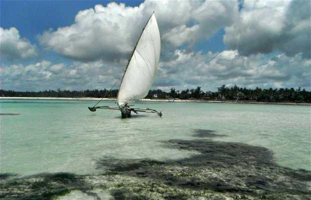 Playa de Galu Kinondo