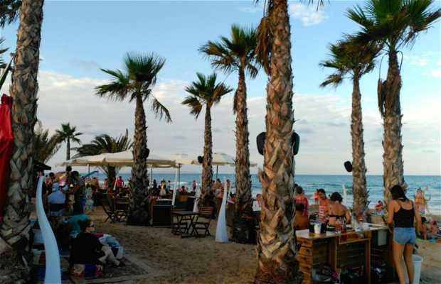Chill-out Playa Guardamar
