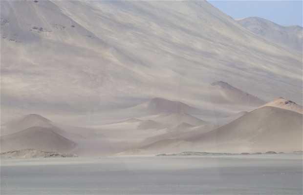 Desierto chileno